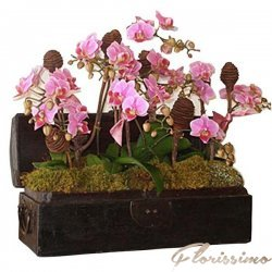 Aranjament floral special FAS8