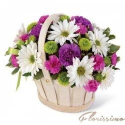 Cos de flori  FC1