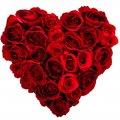 Valentines Day VD6
