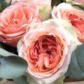 Buchet de flori FB61