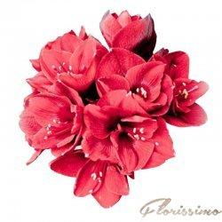 Buchet de flori mireasa NBM19